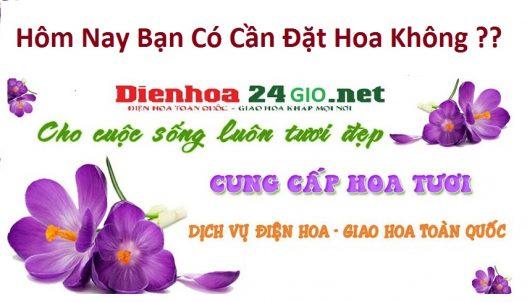 Shop Hoa Tươi Yên Phong Bắc Ninh